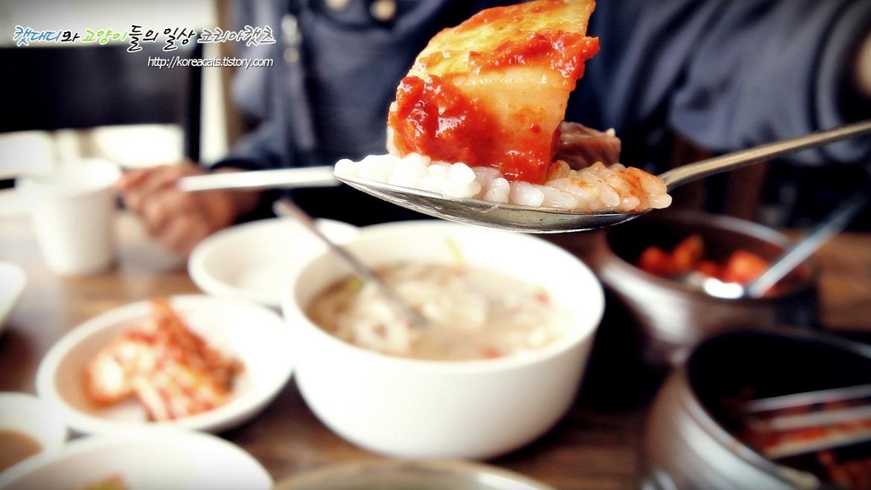 [양평 맛집]깔끔한 사골손칼국수의 명가 옥촌옥 용문산맛집으로 선정합니다~~~