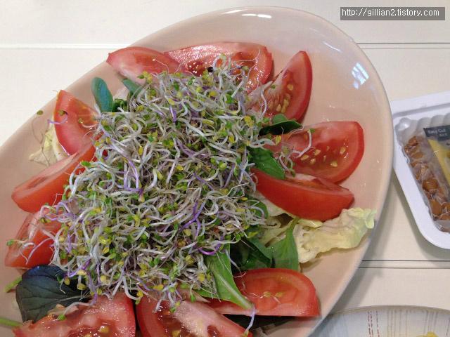 토마토 어린잎 새싹채소와 마늘소스