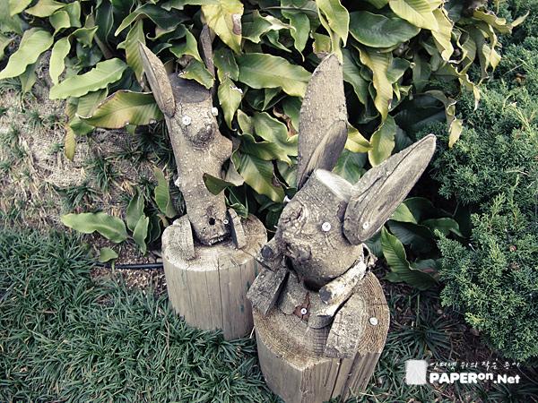 풍림리조트 토양이와 다람쥐