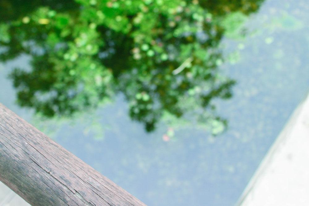 선유도 공원의 작은 연못