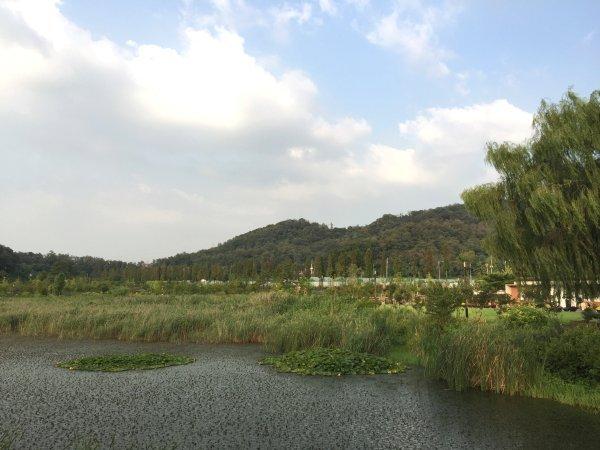 서울 푸른수목원