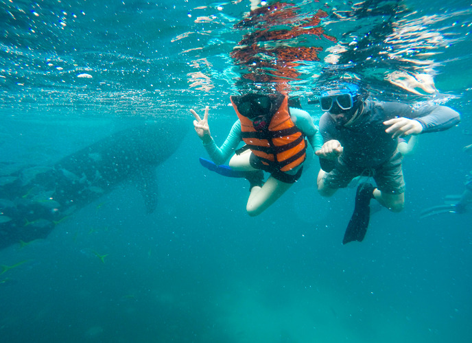 wiz dive club 부부회원이 물속에서 찍은 기념사진