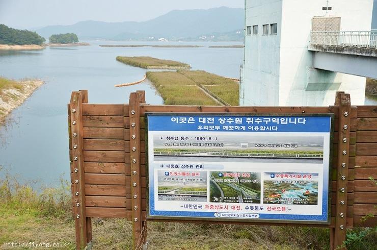 생태공원 야간개장, 자연생태관, 동구청, 대청호오백리길, 대전 랜드마크, 대전 조명, 대전 볼거리