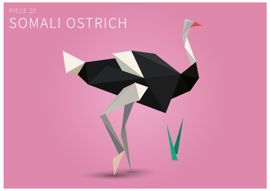 Piece 20 Somali ostrich