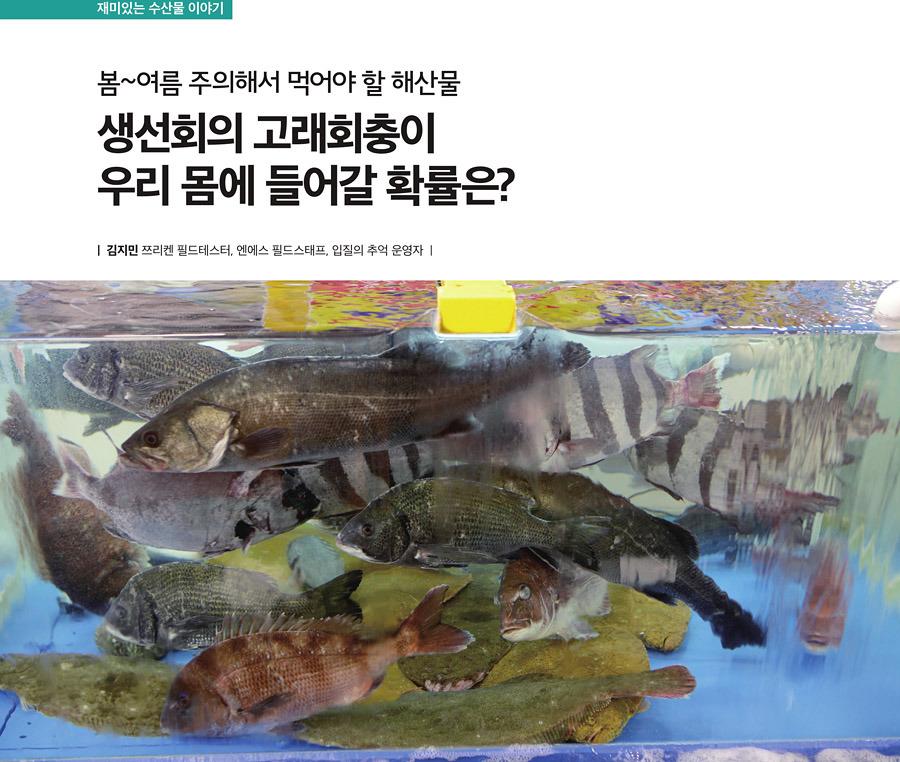 생선회 고래회충이 우리 몸에 들어갈 확률? 봄~여름 주의해야할 해산물