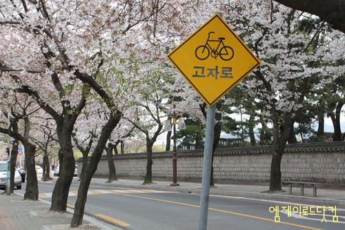 표지판, 자전거도로