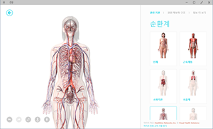 9926_win10_food_health_090