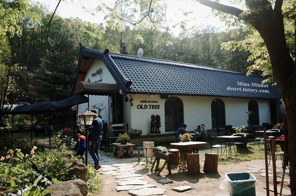 뿌리깊은나무 (Cafe OLD TREE) 옥천 카페, 옥천 가볼만한곳