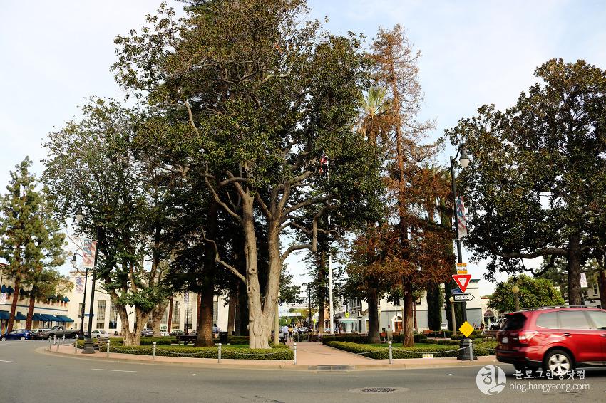 프라자 스퀘어공원, (Plaza Square Park)