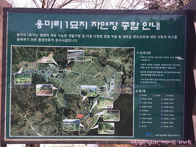 용미리 추모의 숲 수목장지