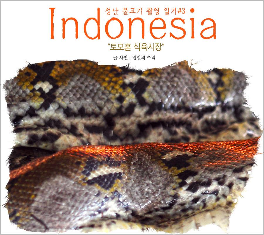 인도네시아 술라웨시섬 여행, 섬뜩했던 마나도 식육시장
