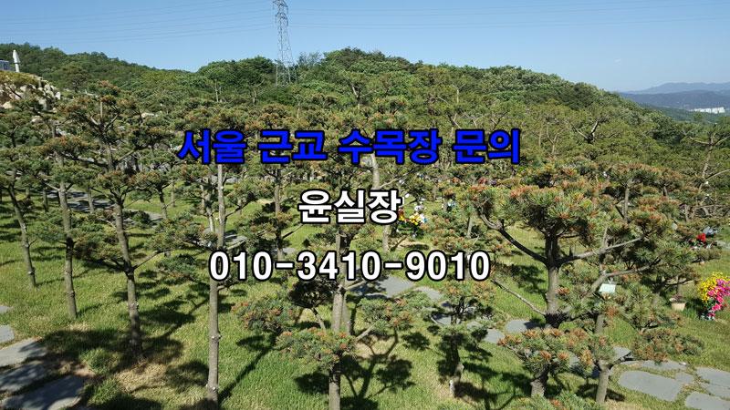 서울근교가족수목장 추천