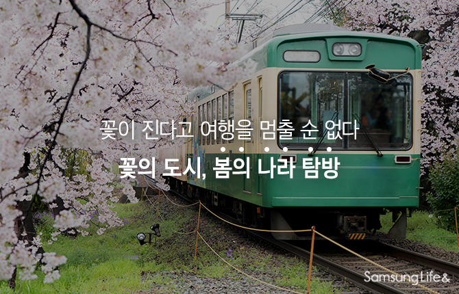 기차 여행 꽃의나라 꽃의도시