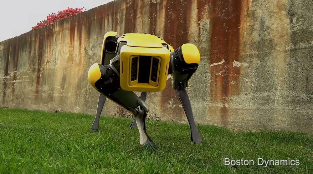 [BP/IT] 더 자연스러워진. 4족 로봇 '더 뉴 스팟 미니(The New SpotMini)